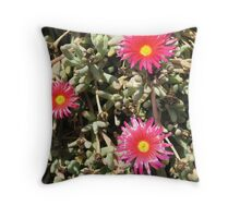 The Three Musketeers Throw Pillow