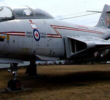 CF-101 Voodoo by Leo  Head