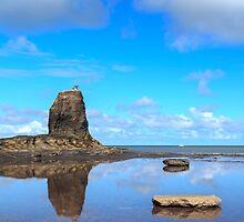Black Nab, Saltwick Bay by JohnHall936