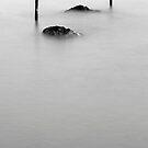 Black&white evanescence by Barbara  Corvino