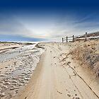 Nauset Indians Beach by capecodart