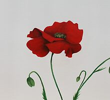 poppy by diane nicholson