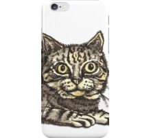 A Tabby Cat with a Mysterious Smile iPhone Case/Skin
