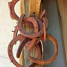 Old Horse Shoes by Diane Trummer Sullivan