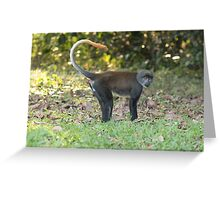 Conservation status Greeting Card