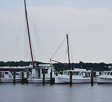 Sailboats in row by sarahshanely
