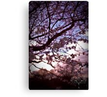 Dusk flowers Canvas Print