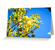 Lemon tree and blue sky Greeting Card