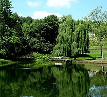 Pond at Boar's Head   ^ by ctheworld