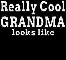 THIS IS WHAT A REALLY COOL GRANDMA LOOKS LIKE by birthdaytees