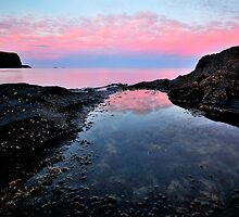 Rockpool Reflections by Garth Smith