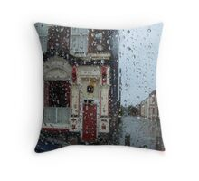 Ringo in the rain... Throw Pillow