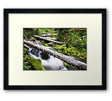 Spring River Framed Print
