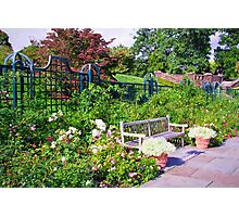Tranquil Rose Garden  Photographic Print
