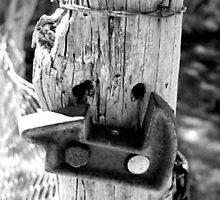 Rusty Gate  by Christie-Anne  Piggott