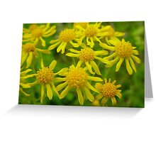 Does the allergies good! Greeting Card