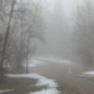 A Misty Morning by Leslie van de Ligt
