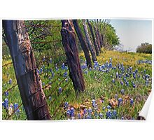 Flowers and Fence Posts Poster