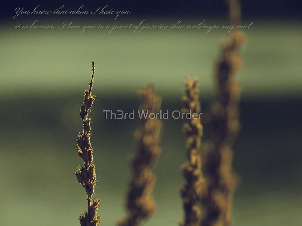 Soul Assassin by Th3rd World Order