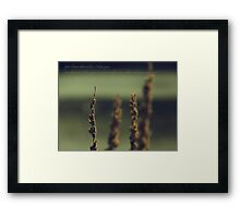 Soul Assassin Framed Print