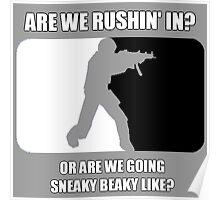 Sneaky Beaky like Poster