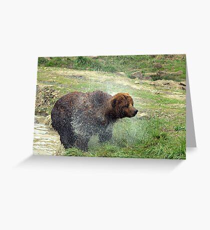 Baby Bear Bath Greeting Card