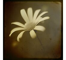 ~Sometimes It Just Needs To Be~ Photographic Print