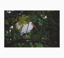 Bird in tree Baby Tee