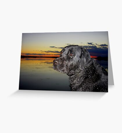 """"""" Boomer going home """" Greeting Card"""