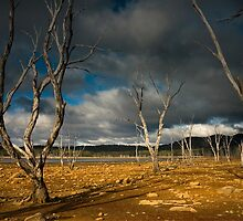 Ominous by Anthony Davey