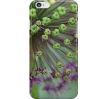 Beauty in bloom iPhone Case/Skin