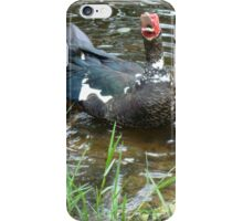 LAUGHING OUT LOUD (LOL) - DUCK STYLE iPhone Case/Skin