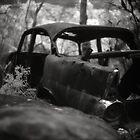 Rust Never Sleeps by Haydn Williams