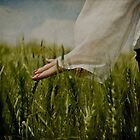 harvest time by Victor Bezrukov
