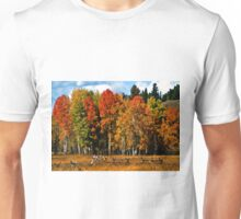 Oxbow Autumn Unisex T-Shirt