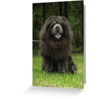 Black-coated Chow-Chow whose Greeting Card
