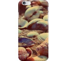 shells iPhone Case/Skin