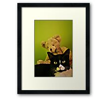 Big Teddy And Tuxedo Cat Framed Print