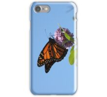 Last Year's Monarch iPhone Case/Skin