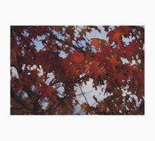 Fall Leaves Baby Tee