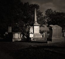TCM - Bagdad Cemetery by Trish Mistric