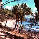 A Noosa beach by georgieboy98