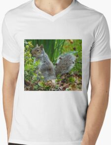 SQUIRREL HIDING IN THE GREENERY Mens V-Neck T-Shirt