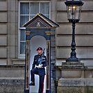 Buckingham Palace Guard by b8wsa