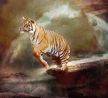 Leap Of Faith by Dave Godden