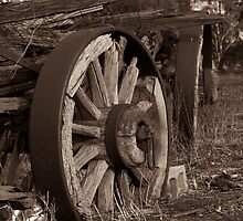 Old Wheels by Paul Thompson