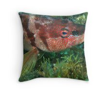Face Painting Throw Pillow