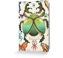 Beetle Collection Greeting Card