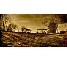 Late Day Sun Photographic Print