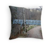 The  Viewpoint Throw Pillow